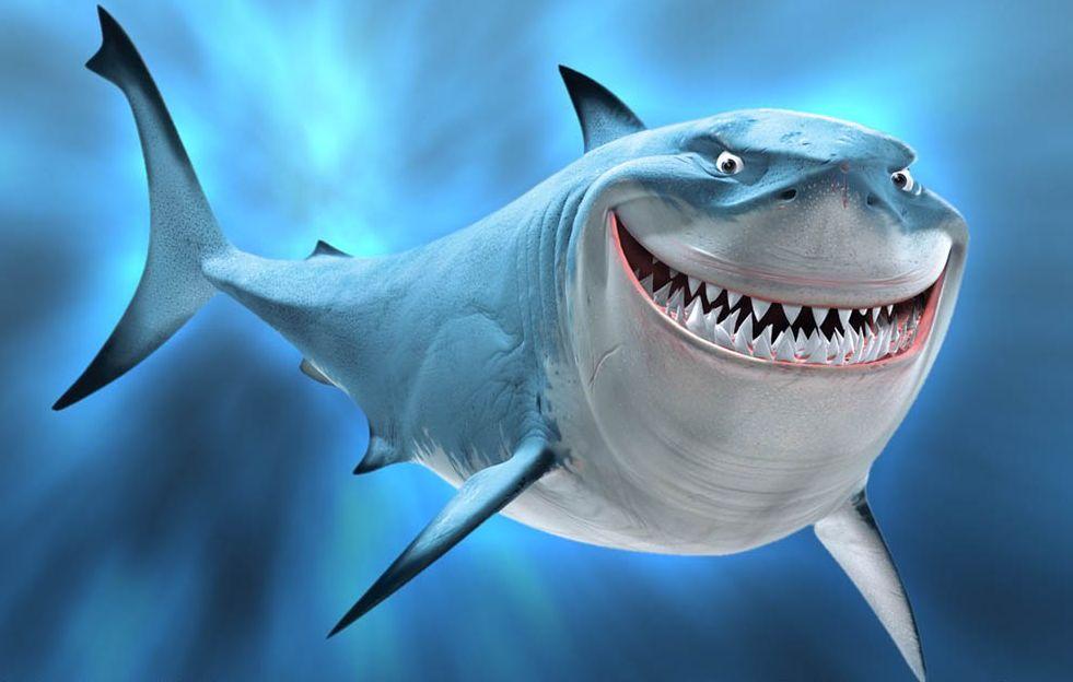 Haai In De Baai Van Saint Tropez on Finding Nemo